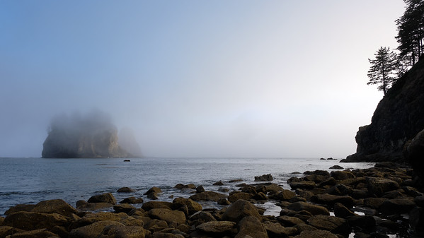 Fog obscuring the seastacks