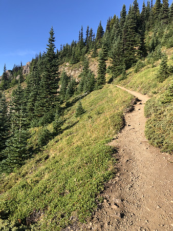 Trail leading up