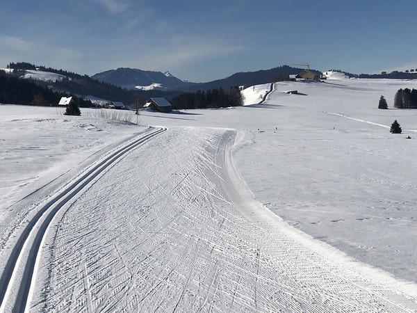 Well skied trails
