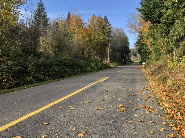Larson Lake Road