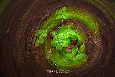 Green twister, P. Nt. Urbasa y Andía