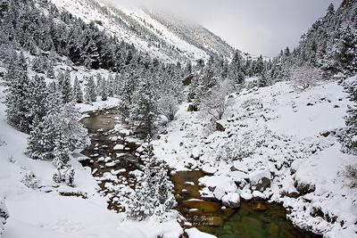 After the snowstorm, Valle de Gaube, P.N. de los Pirineos, Francia