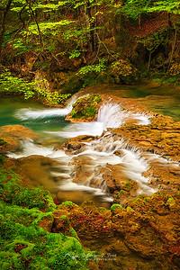 The enchanted stream, P. Nt. Urbasa y Andía