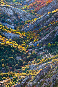 Valle multicolor