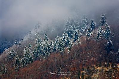 White dusted, Valle de Gaube, P.N. de los Pirineos, Francia