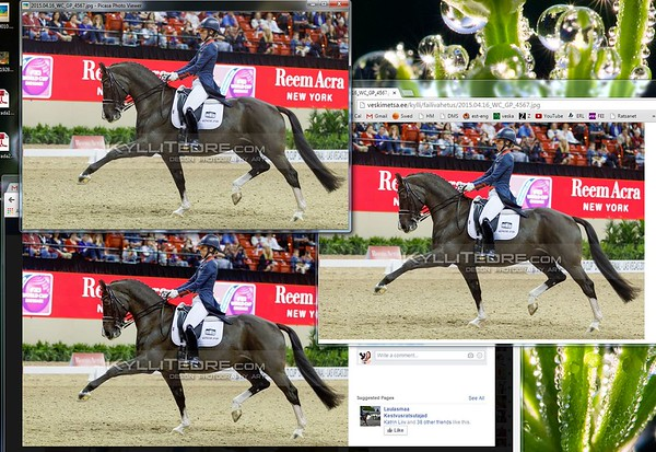 Top: Picasa Photo Viewer (same as Photoshop), below: Facebook, on right: upload to Chrome