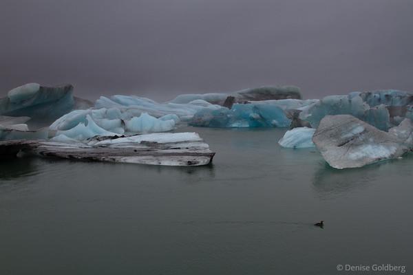 blue ice floating