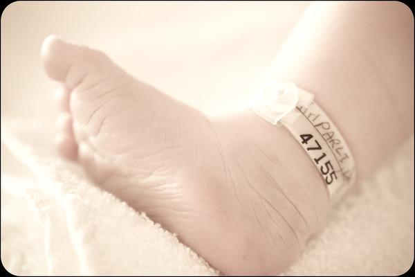 Joliet Rockford Chicago Newborn Baby Photographer