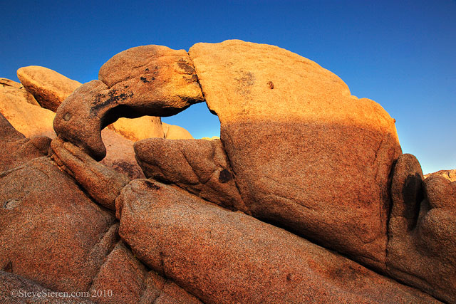 Lobster Claw Arch - Joshua Tree National Park