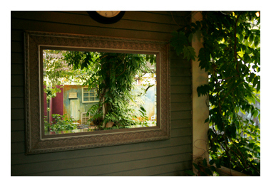 gardens reflected in mirror in the outdoor photo garden at Campbell Salgado Studio