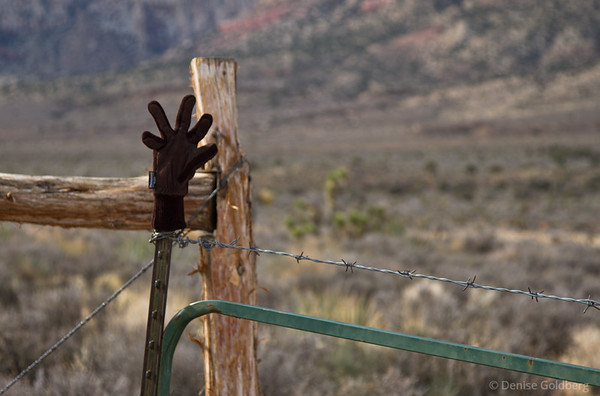lost glove, waiting, red rock canyon national conservation area