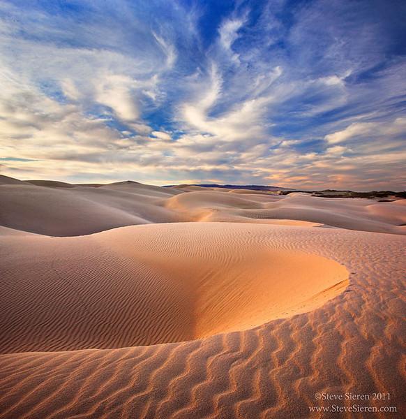 Coastal Dunes along California's Central Coast