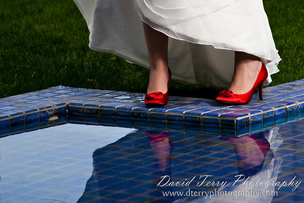David Terry Photography - Gilbert and Elisa - Wedding