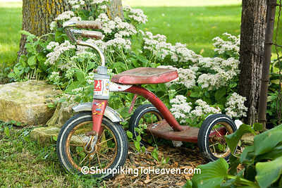 Tricycle in the Garden, Jackson County, Iowa