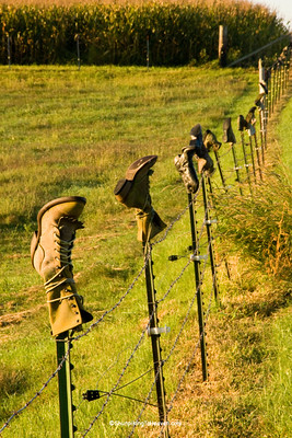 Boots on Fenceposts, Juneau County, Wisconsin