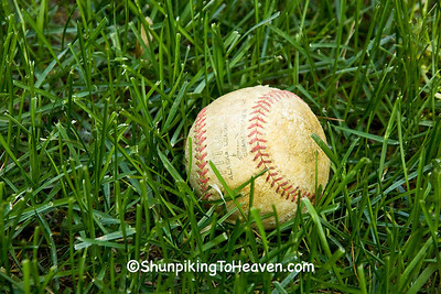 Baseball in Grass, Dane County, Wisconsin