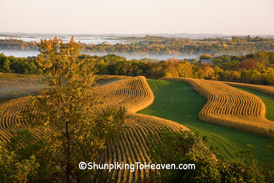Rolling Farmland in Autumn, Crawford County, Wisconsin
