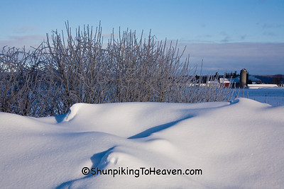 Frosty Winter Scene, Sauk County, Wisconsin