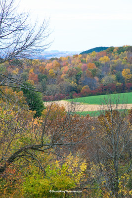 Autumn Ridgetop View, Sauk County, Wisconsin