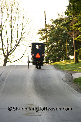 Amish Buggy at Sunset, Holmes County, Ohio