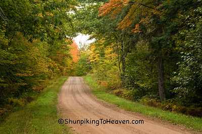 Autumn Road Scene, Oneida County, Wisconsin