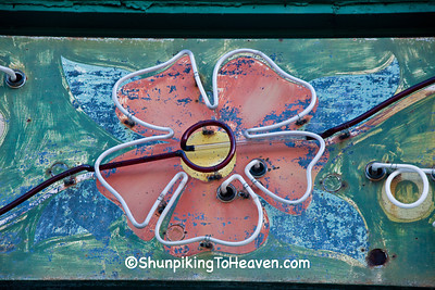 Neon Flower, Flagstad Flower Shop, Madison, Wisconsin