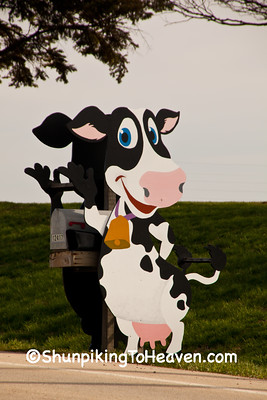 Smiling Cow Mailbox, Ogle County, Illinois