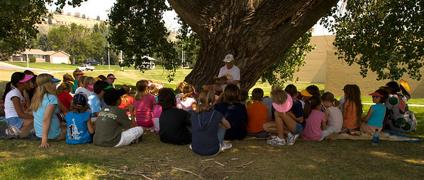 Summer Camp Reading under a tree