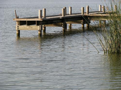 An empty pier somewhat hidden behind reeds (20080726_10007)