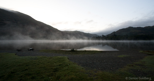 morning misty magic