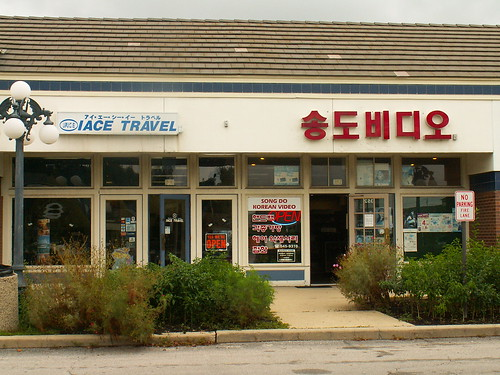 Travel Agency and Video Store