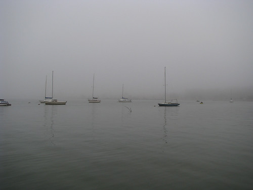 Sailboats moored in the shallows of White Rock Lake on a foggy morning (20080126_01619)
