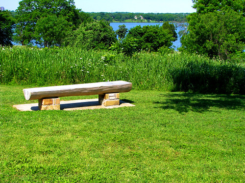 A roughly hewn wood and stone bench atop a hill of wildflowers and trees with White Rock Lake in the background (20080518_05572)