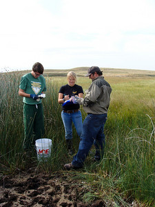 Students at work on the edge of a wetland