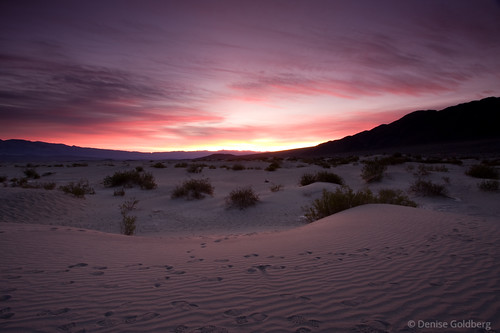 Death Valley sand dunes sunrise