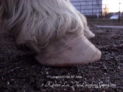 Luna RF After Barefoot Trim