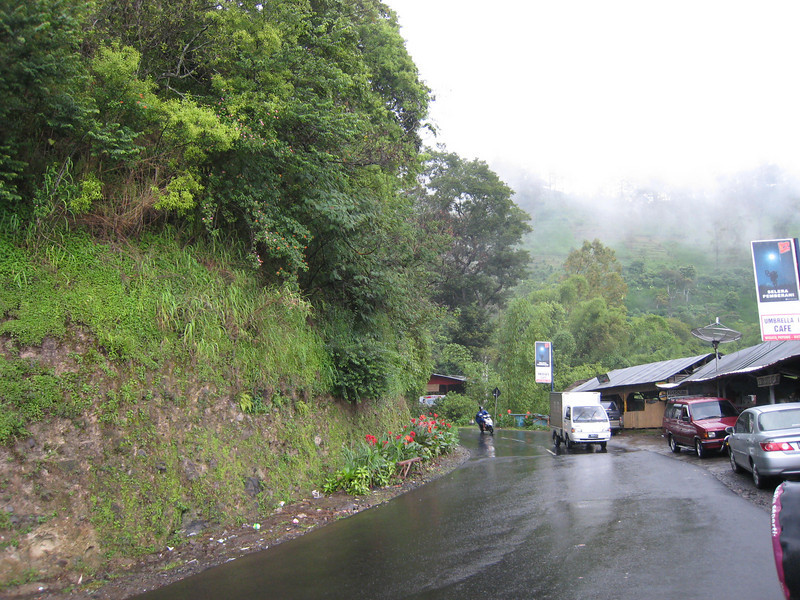 Road at Batu, near Malang