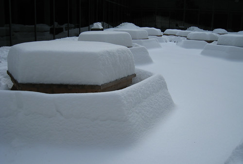 picnic tables in the snow