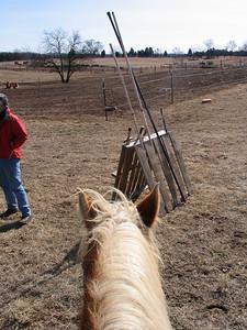 SCA equestrian practice