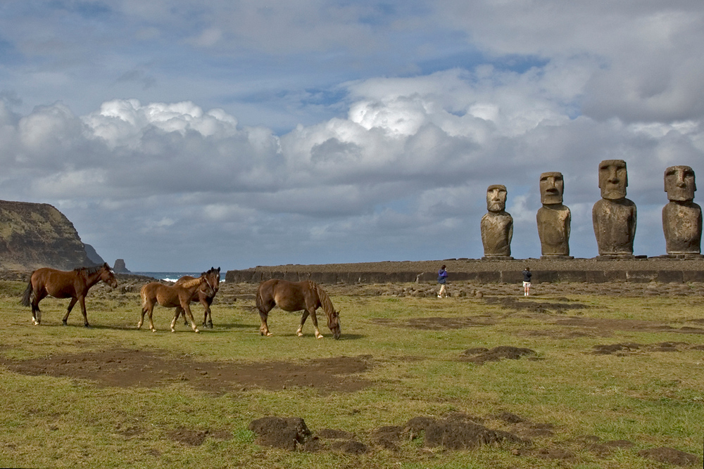 Horses and Moai on Easter Island
