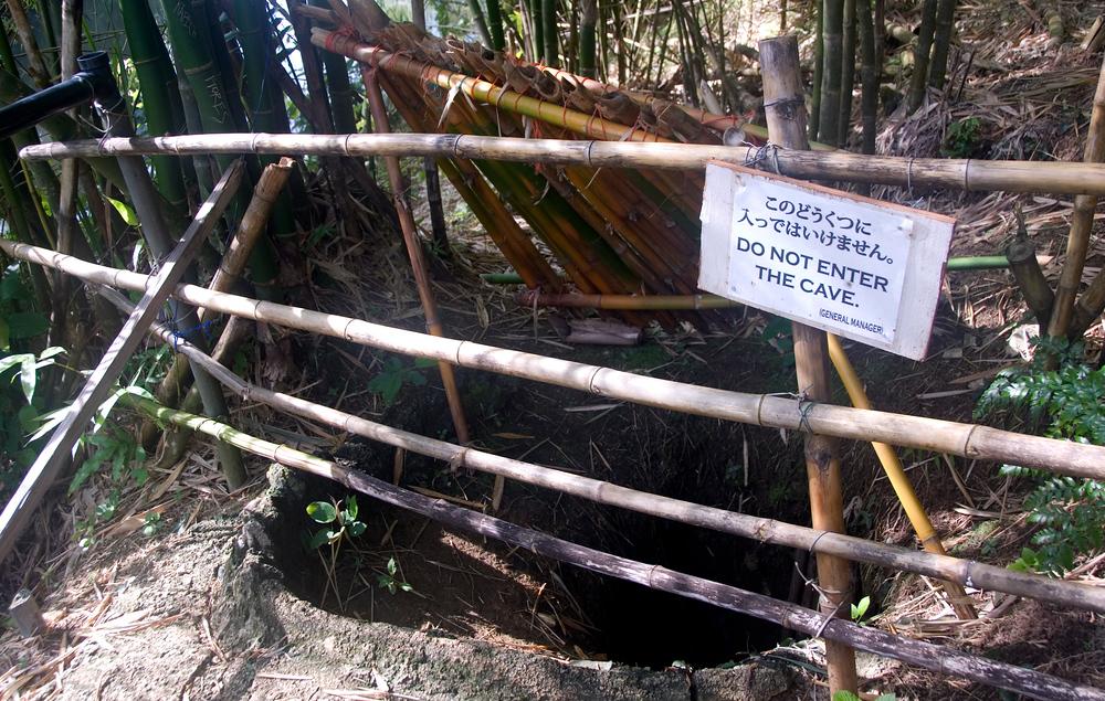 Yokois Cave, Guam