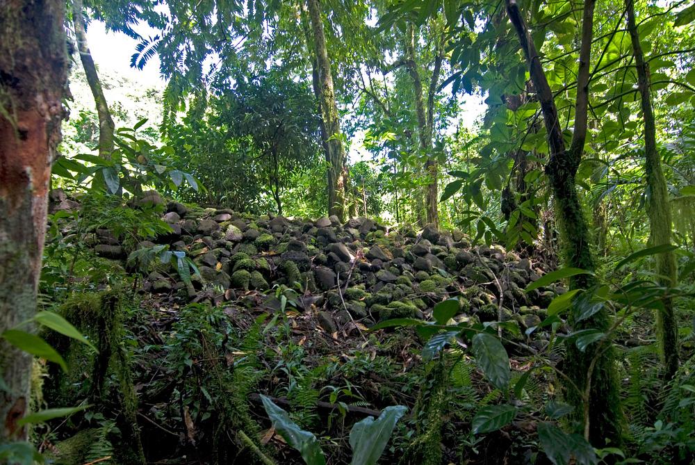 Ruins of Menka, Kosrae, Micronesia