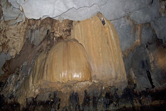 The Mushroom Formation