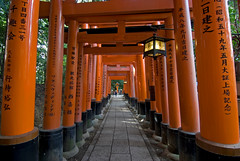 The orange gates of the Fushimi-inari Shrine in Kyoto