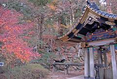 Shrine with autum colors in Nikko