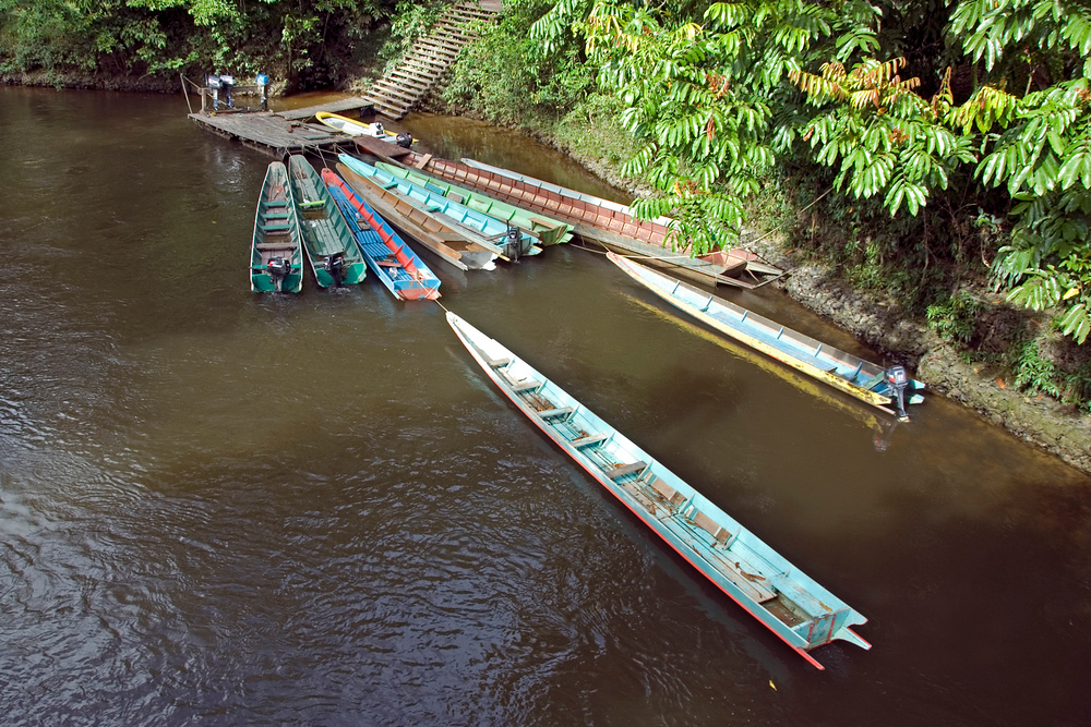 Long boats in Mulu National Park