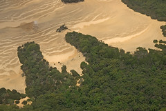 Sand creep into the forest on Fraser Island