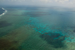 The only way to really appreciate the reef is from the air. Preferably from space.