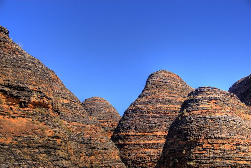 Bee Hive Domes. Purnululu National Park.