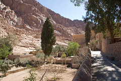 Gardens of St. Catherines Monastery